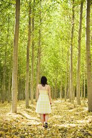 walking alone in nature